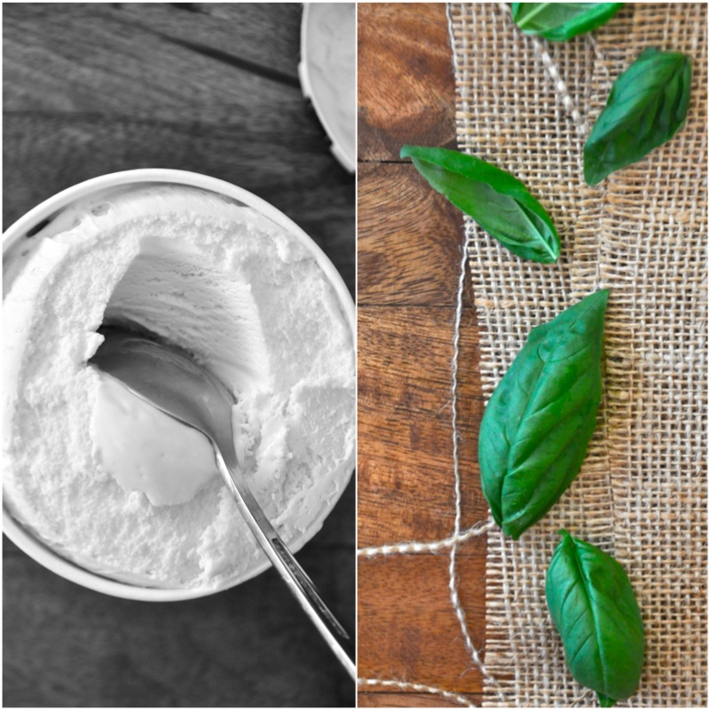 Vanilla ice cream and fresh basil leaves for making a simple and delicious milkshake