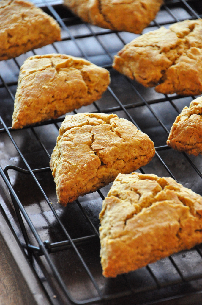 Homemade Pumpkin Scones cooling on a rack
