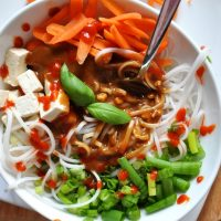 Big bowl of our Asian Noodle Bowl recipe made with Ginger Peanut Dressing