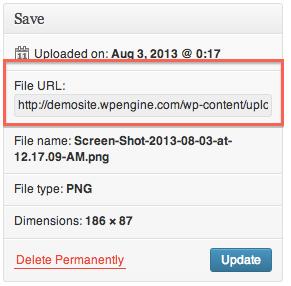 Media File URL