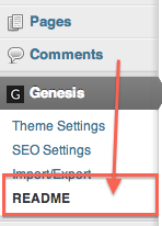 Showing theme options for our post on How To Install Custom Social Media Buttons on your Website