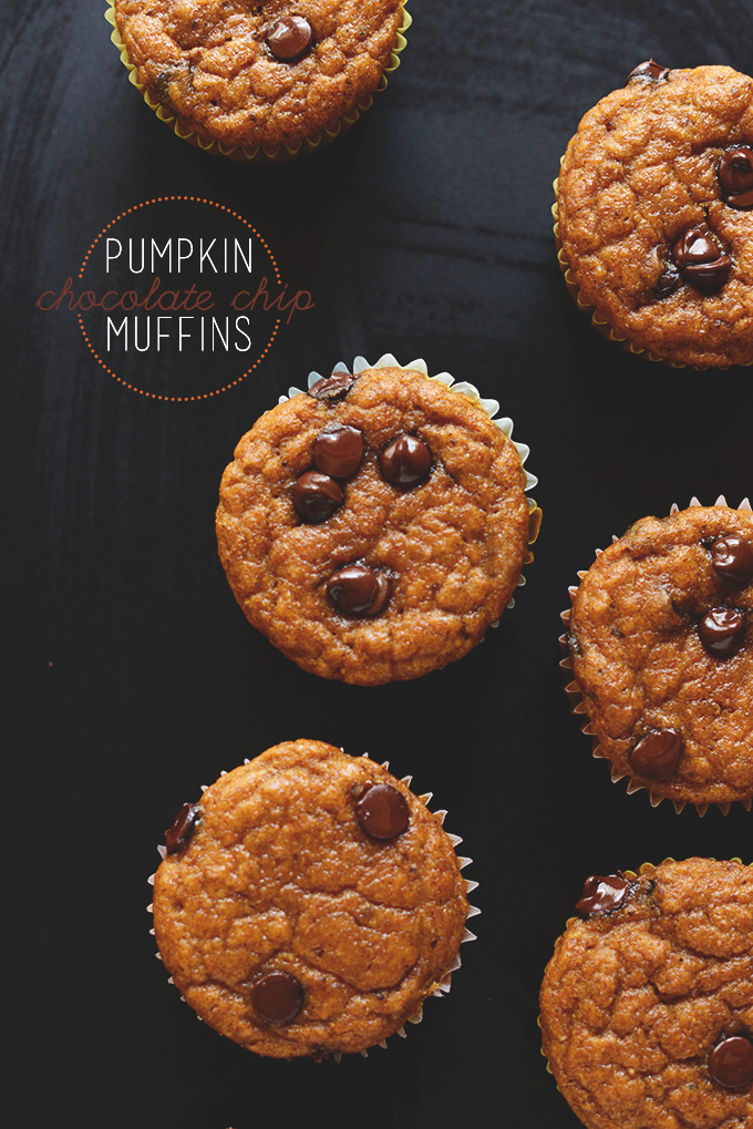 Batch of vegan Pumpkin Chocolate Chip Muffins for our Thanksgiving recipe roundup