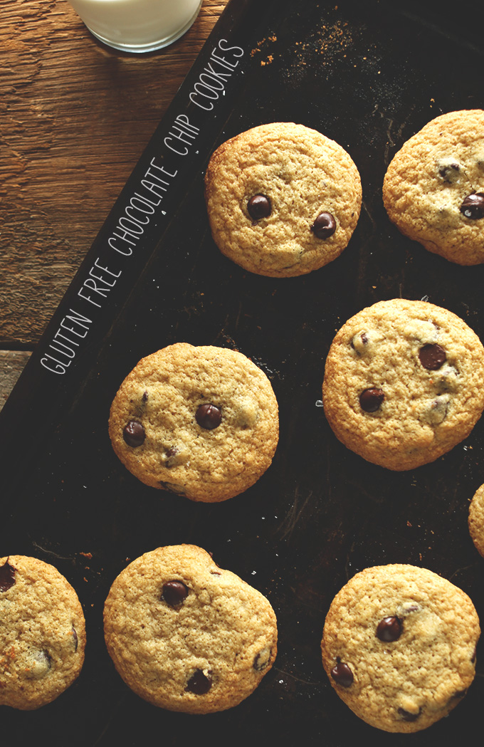 Batch of our Gluten-Free Chocolate Chip Cookies recipe with a glass of almond milk