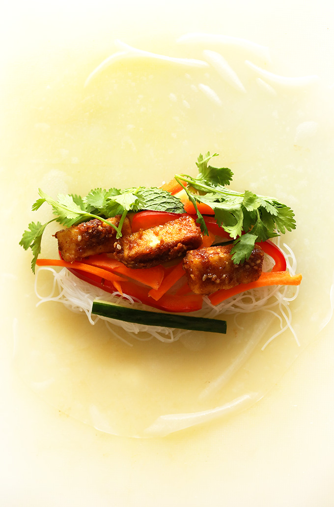 Softened spring roll wrapper topped with rice noodles, vegetables, and tofu for delicious Vegan Vietnamese Spring Rolls