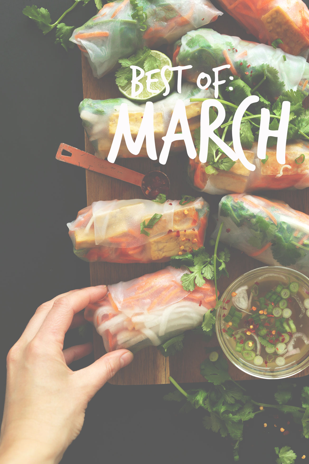 Photo of spring rolls for our Best of March post