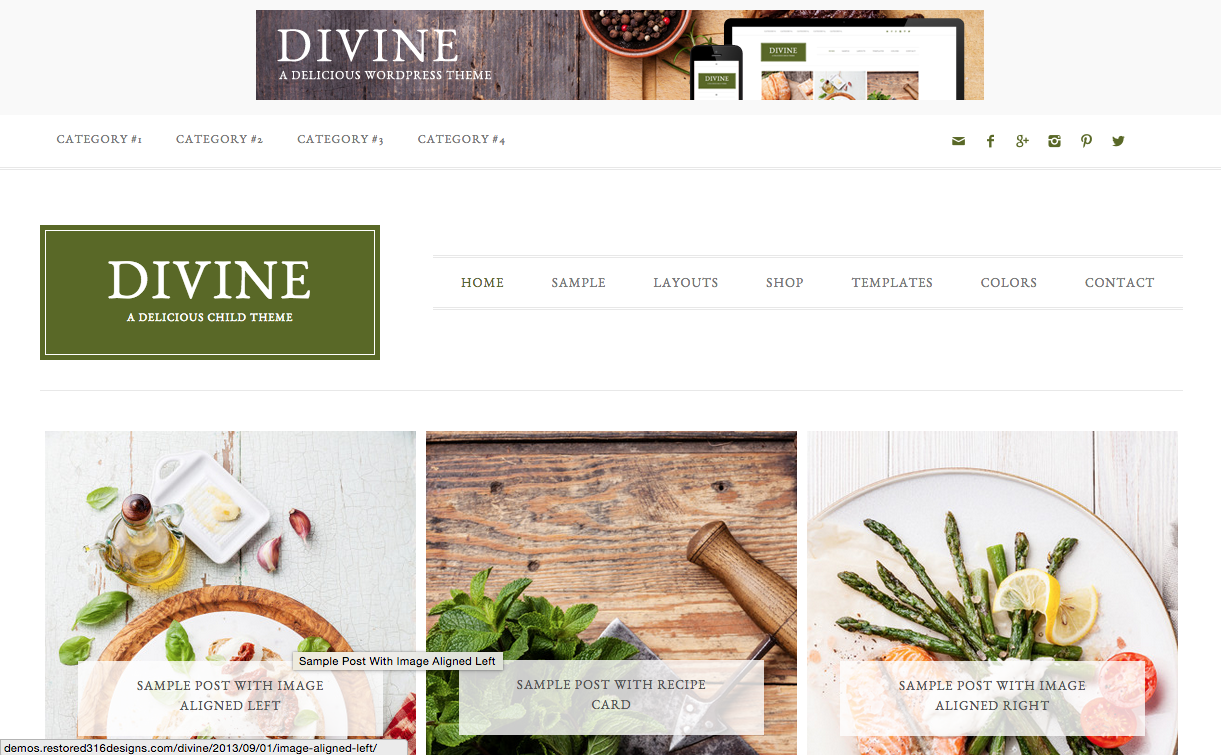 Divine Theme for WordPress Blogs
