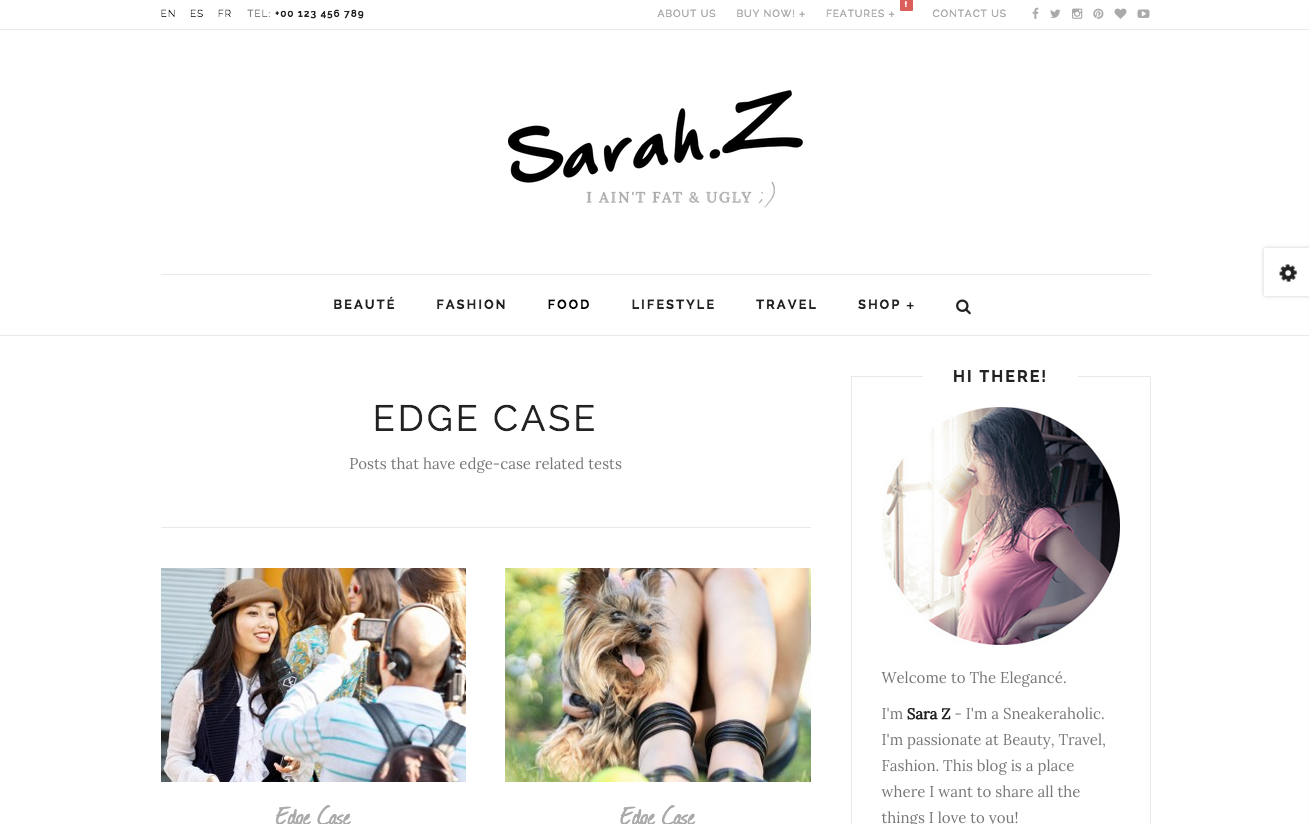 Elegance Theme for WordPress Blogs