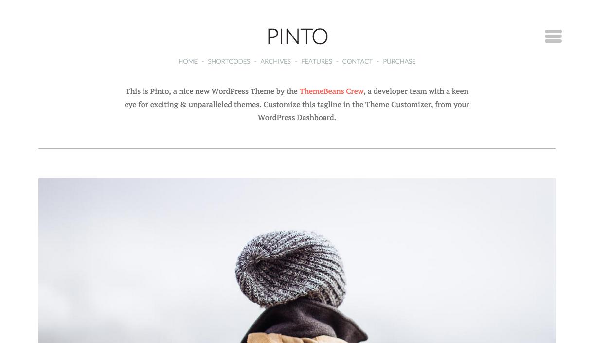 Pinto Theme for WordPress Blogs