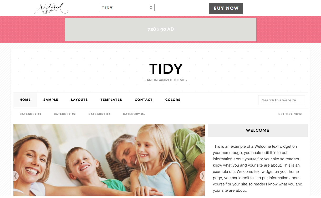 Tidy Theme for WordPress Blog