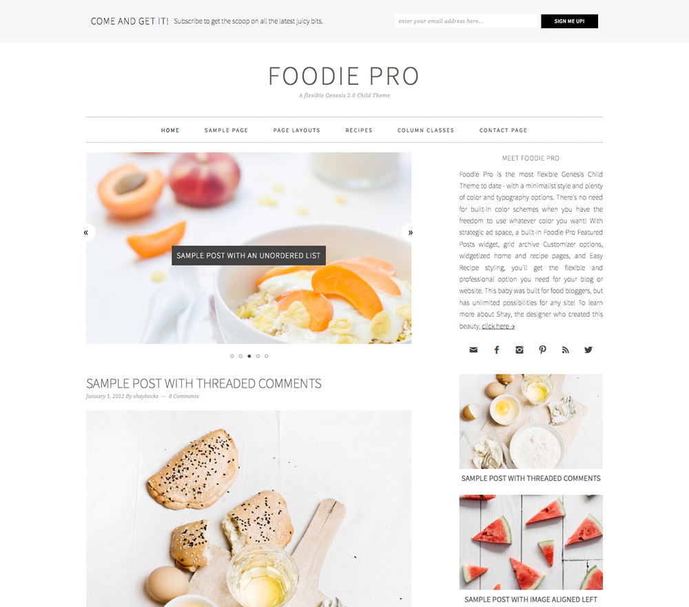 Foodie Pro Theme which is a top pick for food bloggers
