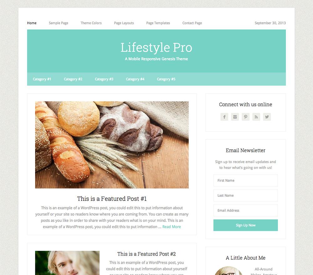 Lifestyle Theme for WordPress Blogs