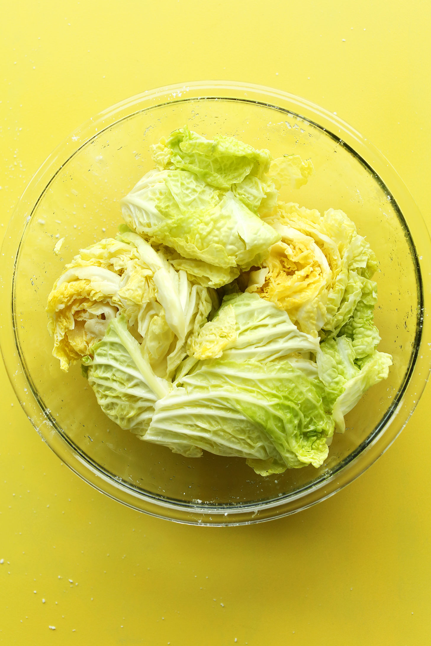 Bowl of napa cabbage for making our easy vegan kimchi recipe