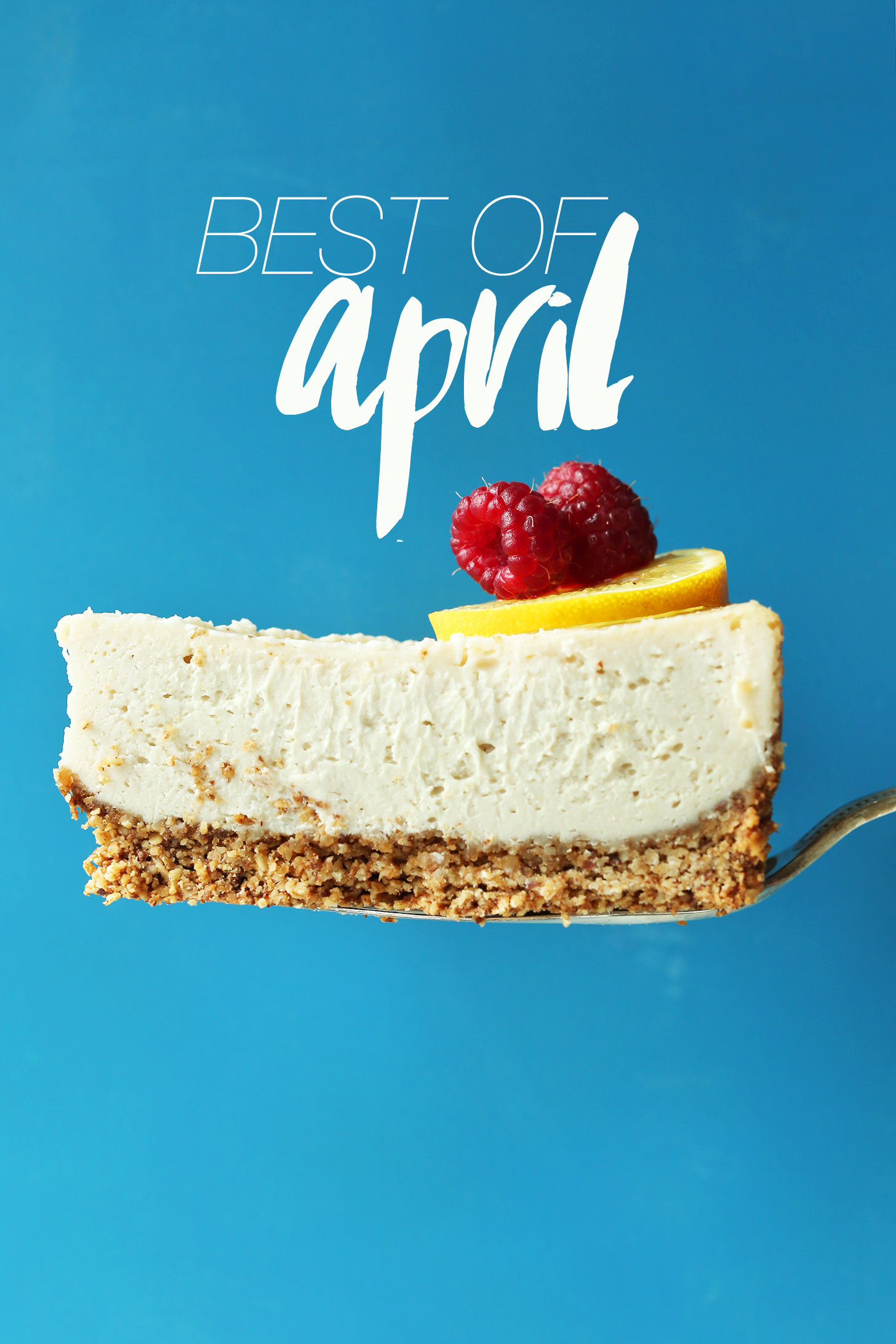 Slice of our Macadamia Nut Cheesecake for our Best of April recipe post