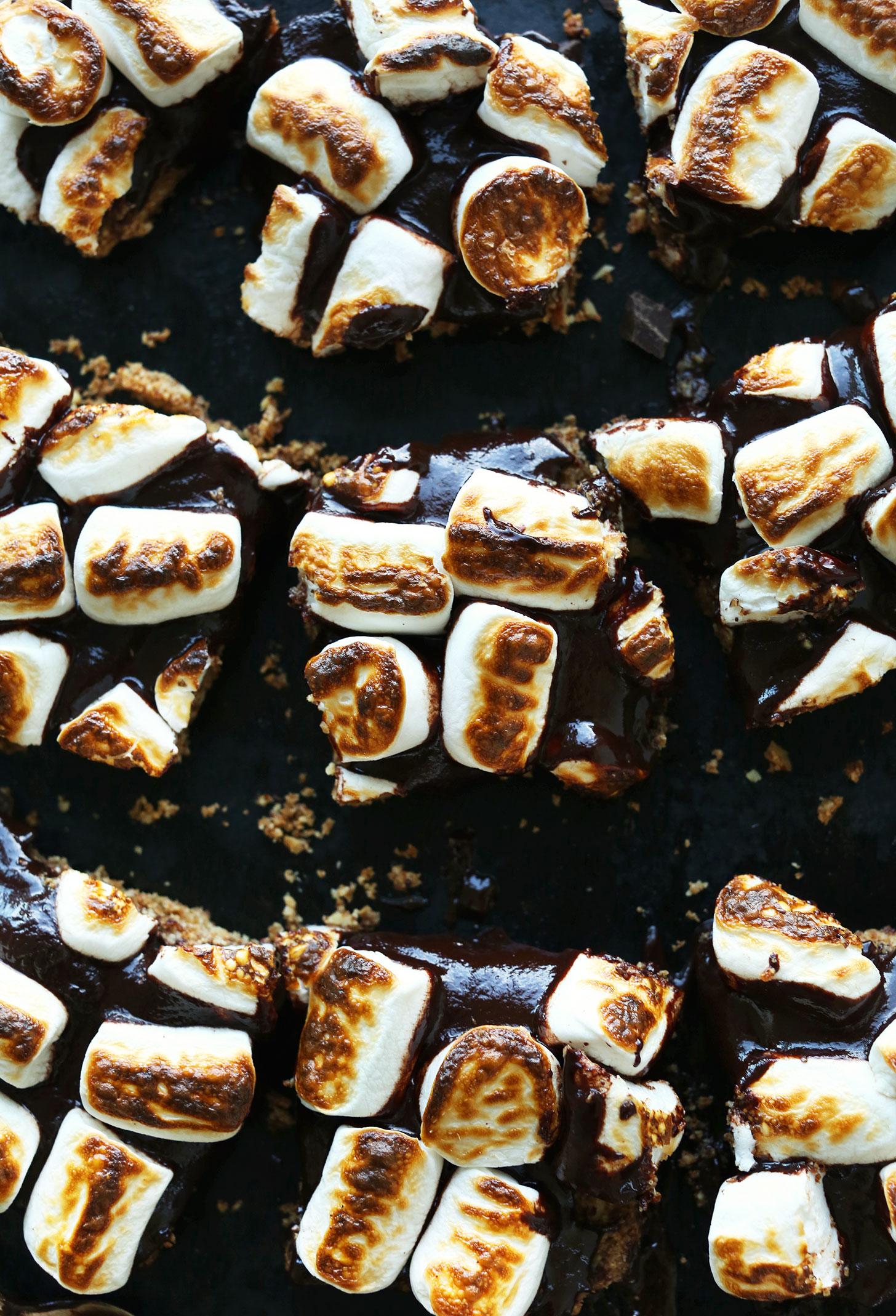 Squares of our Amazing Vegan Gluten-Free S'Mores Bars