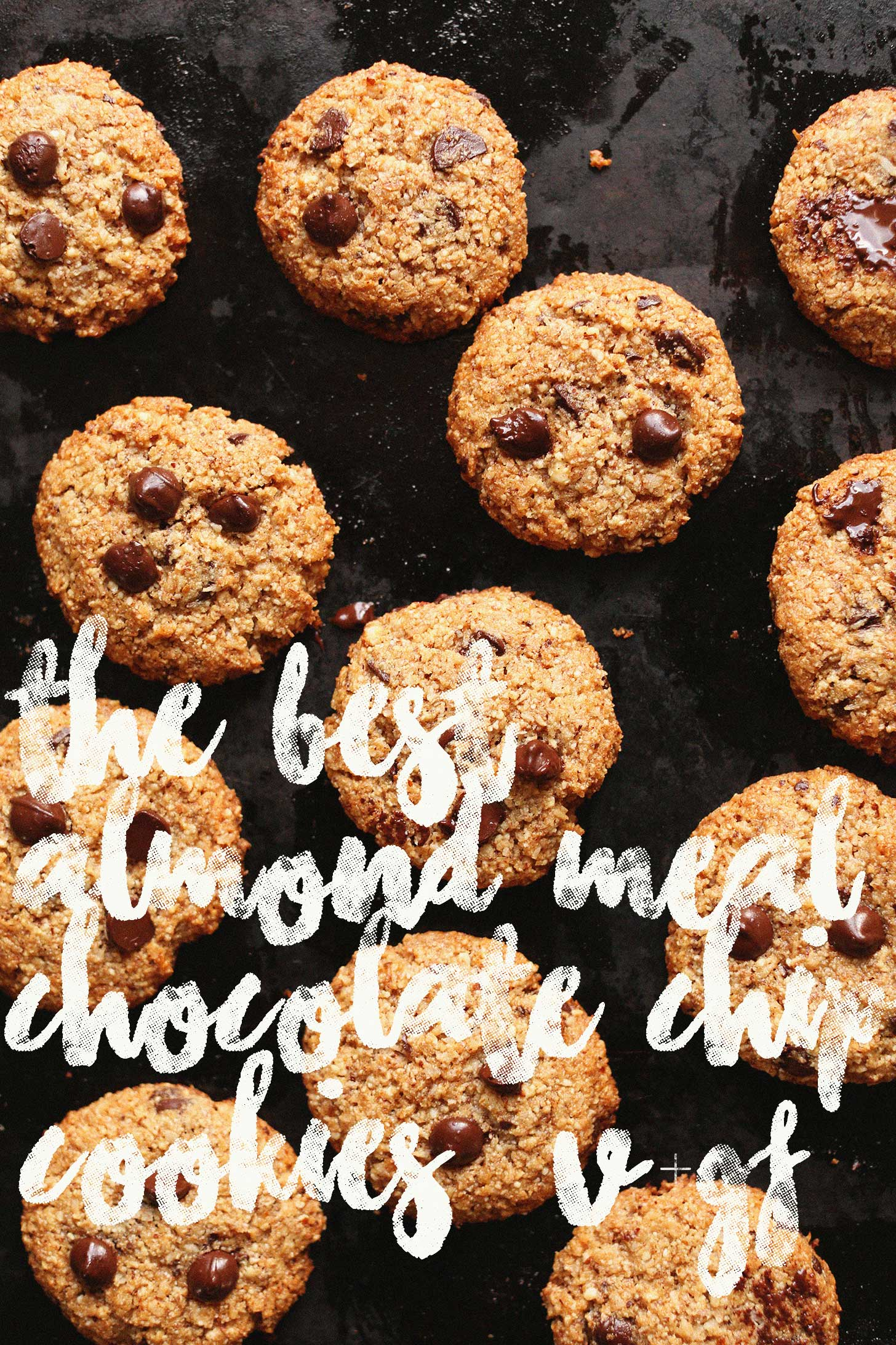 The best gluten-free and vegan Chocolate Chip Cookies on a cookie sheet