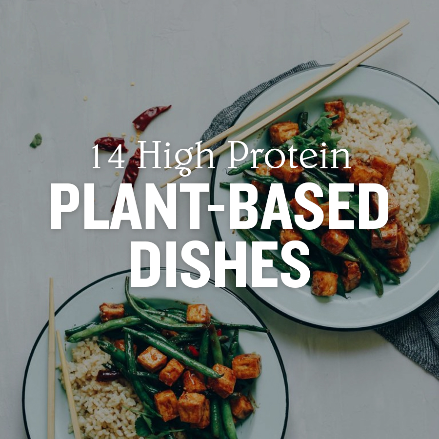 14 High Protein Plant-Based Dishes
