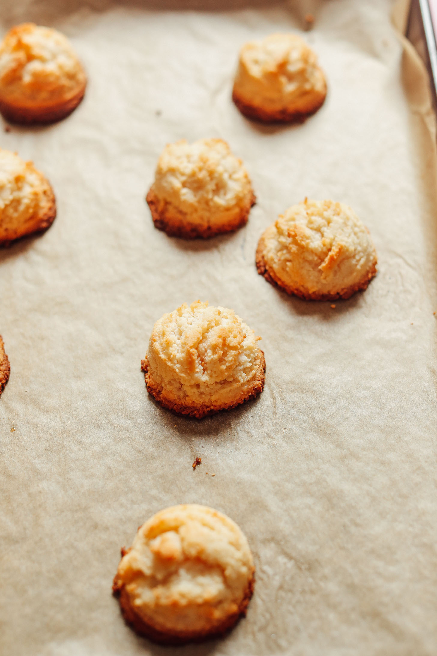 Parchment-lined baking sheet with a batch of freshly baked Vegan Coconut Snowball Cookies