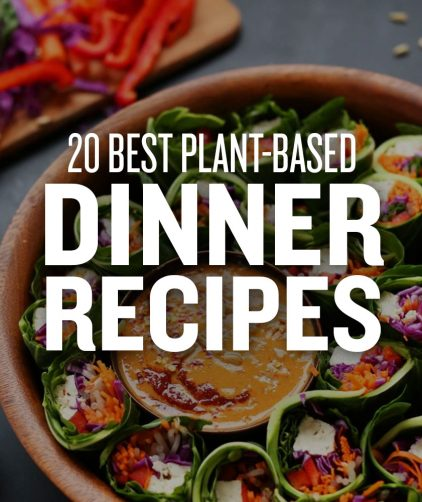 Bowl of text overlaid with text saying 20 Best Plant-Based Dinner Recipes