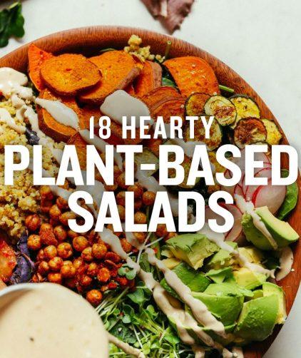 Abundance Kale Salad overlaid with text saying 18 Hearty Plant-Based Salads