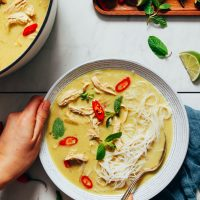 Vintage spoon in a bowl of our Cozy Thai-Inspired Chicken Noodle Soup recipe