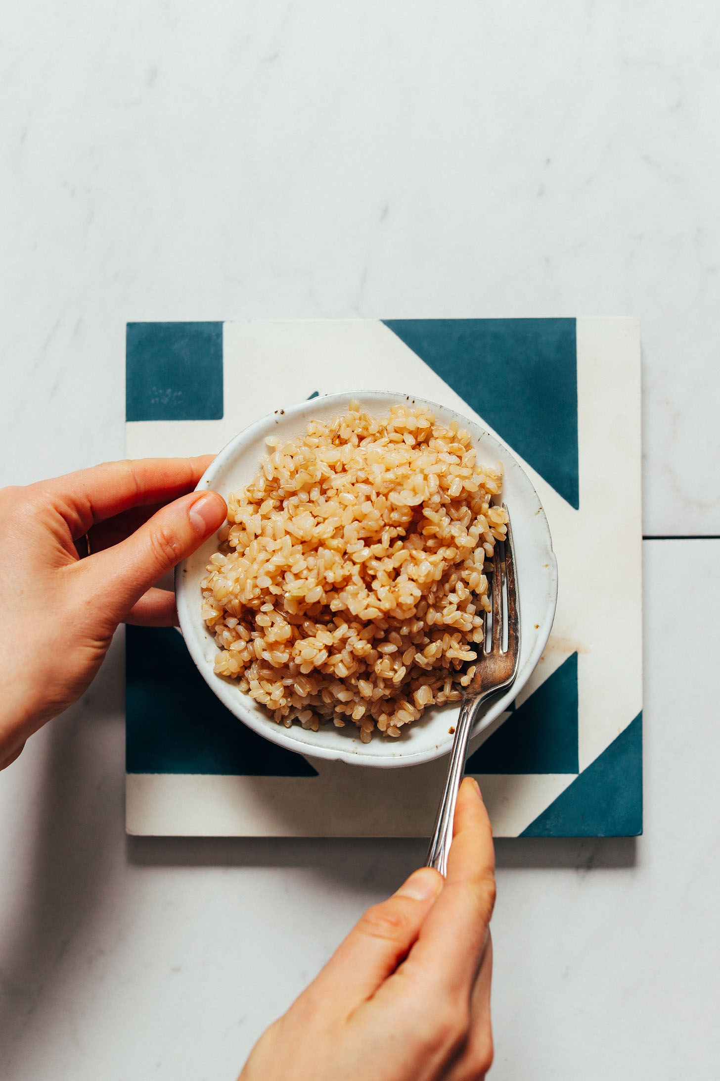 Fork resting in a bowl of Instant Pot brown rice