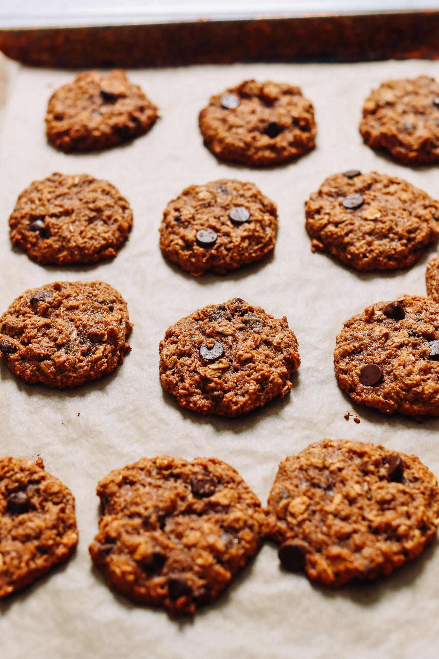 Baking sheet of freshly baked Pumpkin Chocolate Chip Cookies