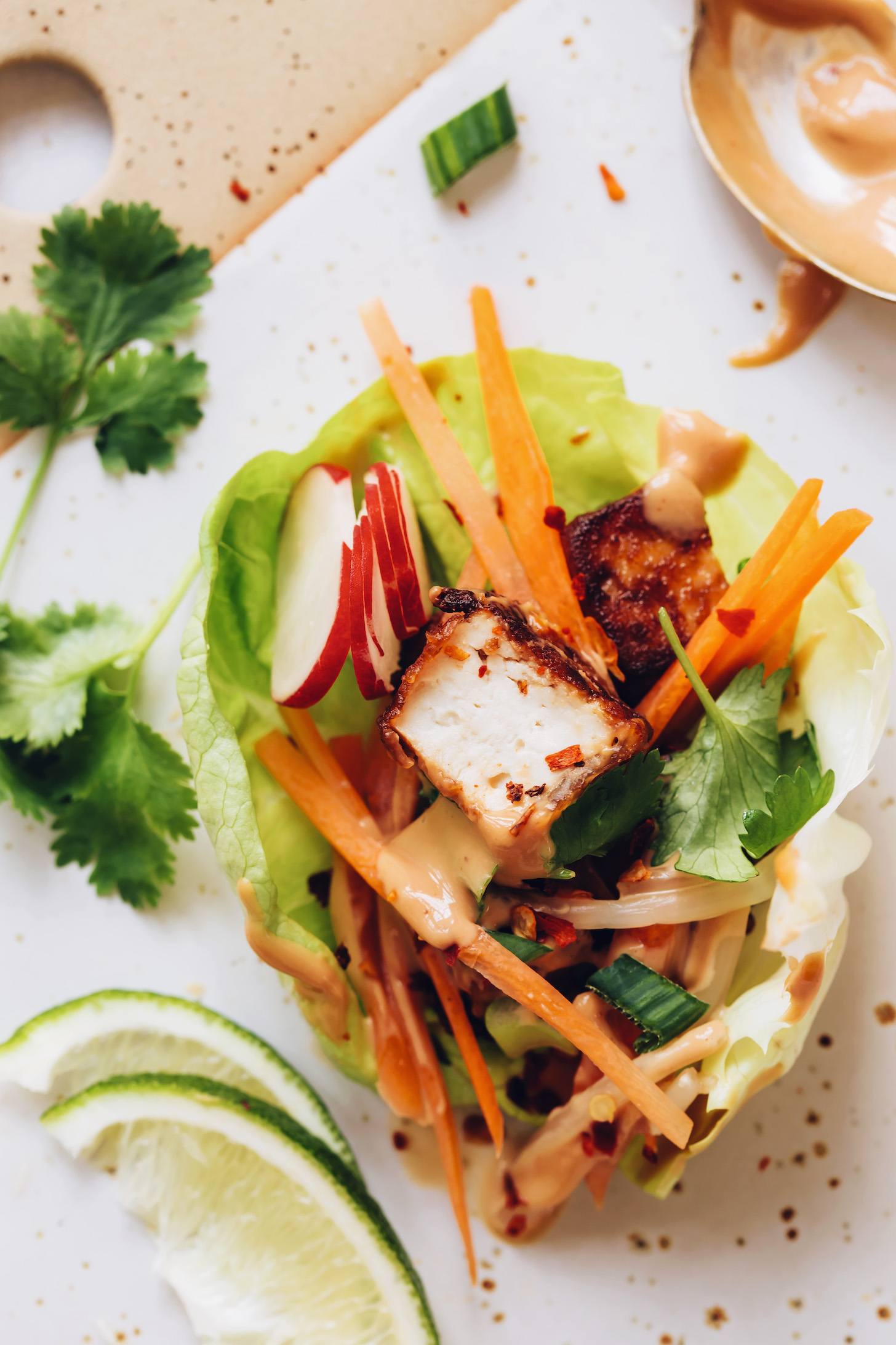 Close up shot of an Asian-inspired tofu lettuce wrap