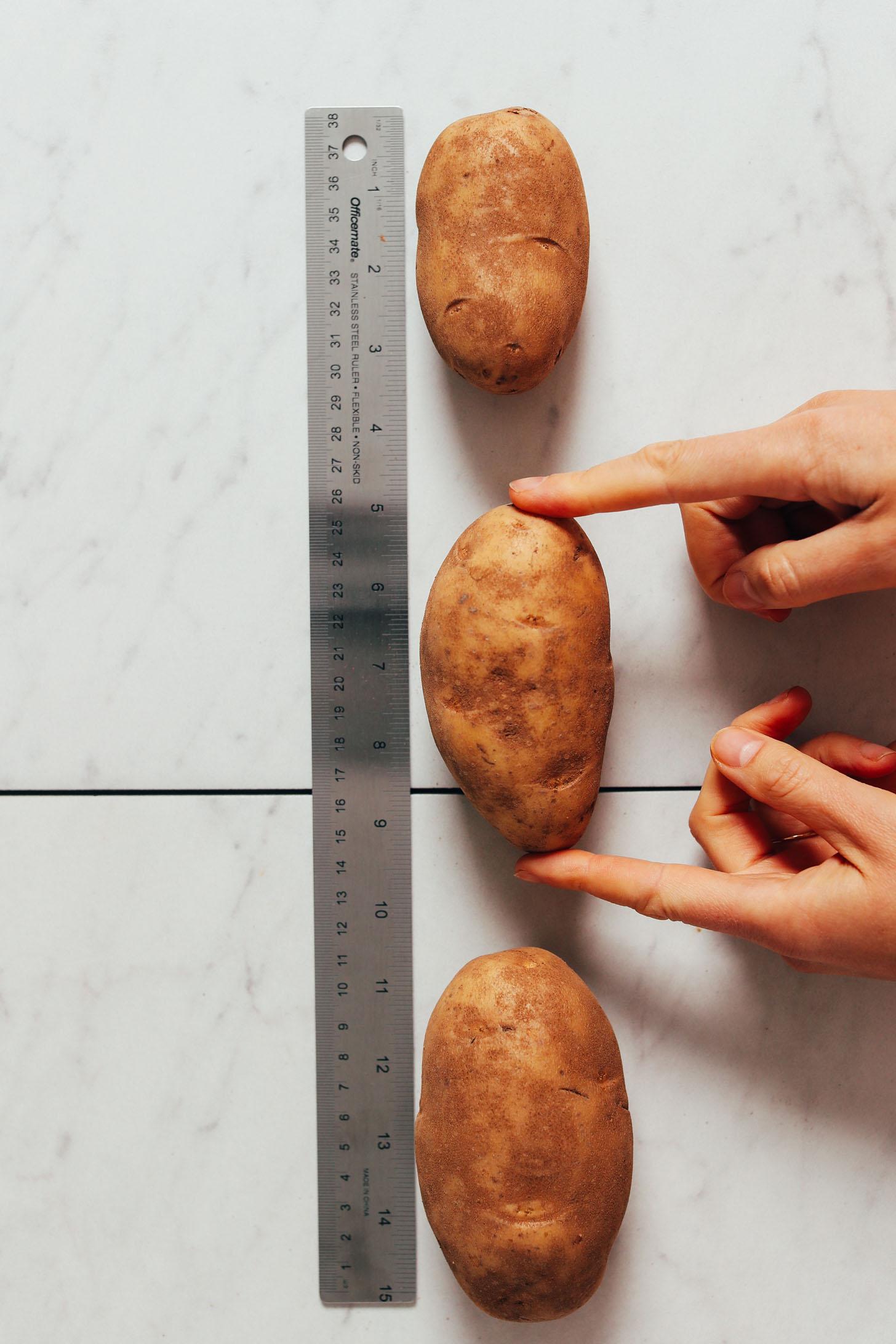 Pommes de terre petites, moyennes et grandes à côté d'une règle pour montrer l'échelle