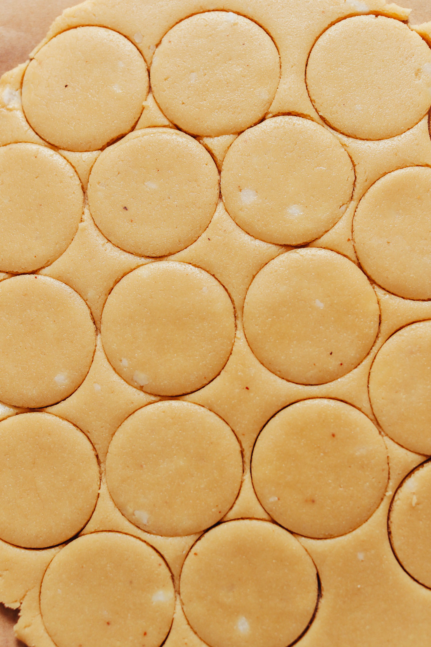 Vegan gluten-free shortbread cookie dough cut into circles with a cookie cutter