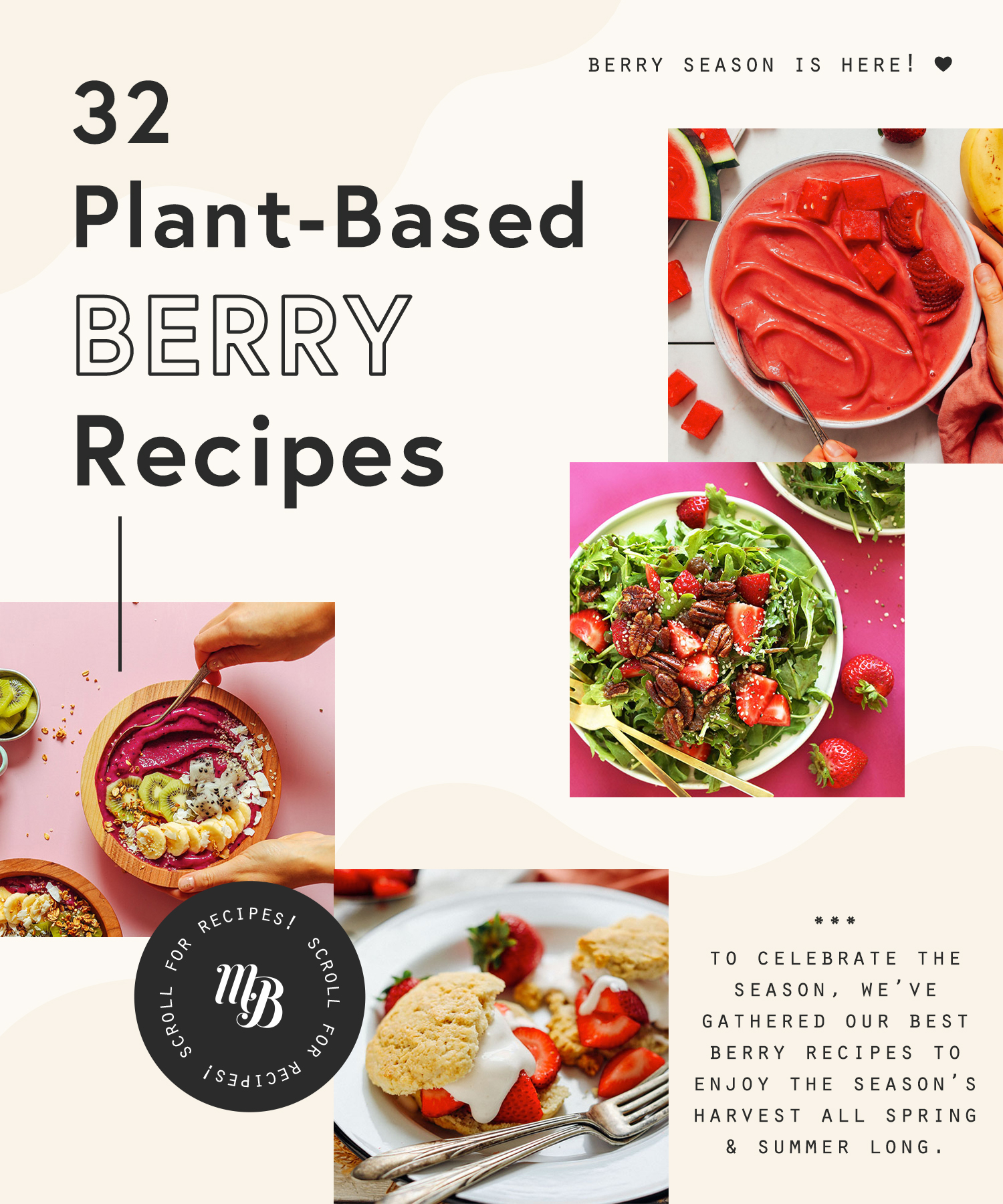 Assortment of plant-based berry recipes