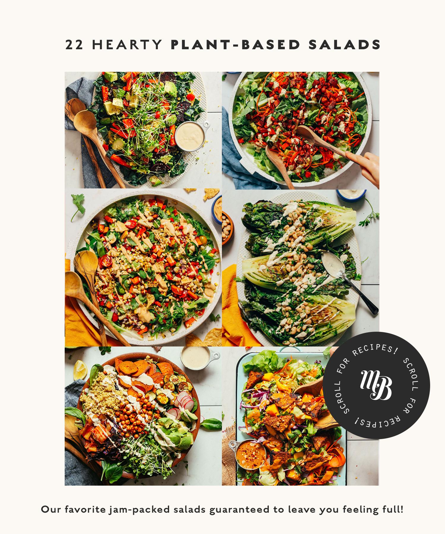 Assortment of hearty vegan salad recipes