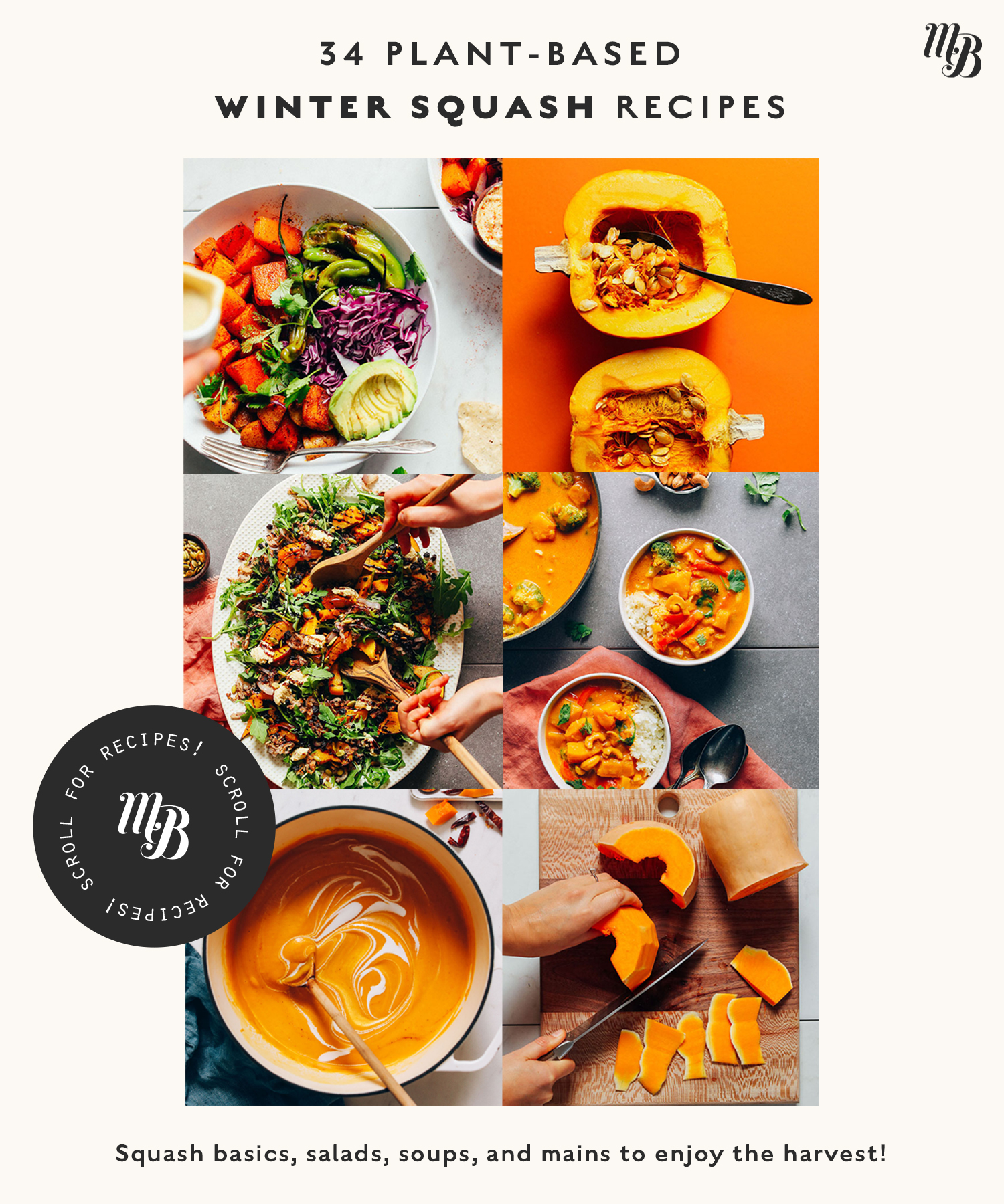 Assortment of vegan winter squash recipes